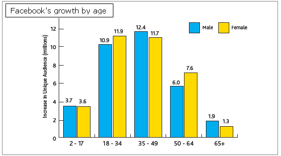 facebook growth age 08 Social Networks and Blogs Reached Largest Growth Among Top Online Activities  Nielsens Global Research