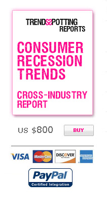 big2 Consumer and Market Trends during Recession: Cross–Industry Research Report by TrendsSpotting.com