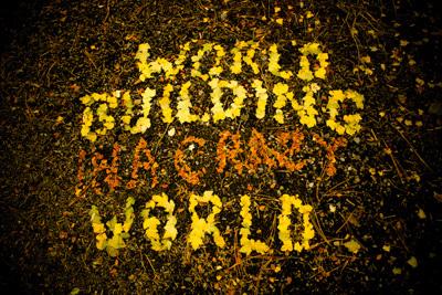 worldbuilding_Hariss